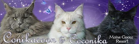 Coconika1