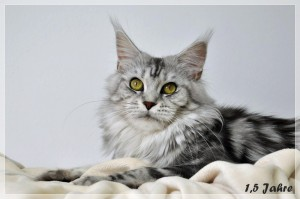 Sophie 1,5 Jahre (24)