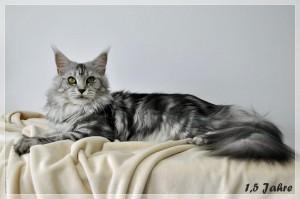 Sophie 1,5 Jahre (26)