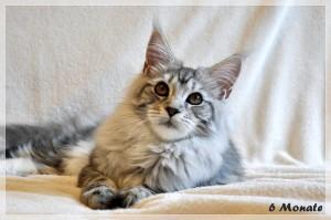 Sophie 6m (12)