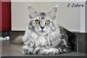 Sophie 2 Jahre Kopie
